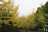 20090924_002_2